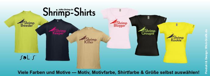 shrimp-shirts